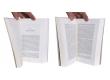 Supergods - Pages intérieures - (c) Stripologie.com
