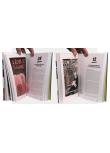 Comics - Pages intérieures - (c) Stripologie.com