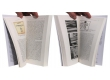 Les cases à l'écran - Pages intérieures - (c) Stripologie.com