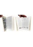Yann & Conrad - Pages intérieures - (c) Stripologie.com