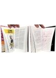 Yann - Pages intérieures - (c) Stripologie.com