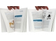 Entretiens avec Joann Sfar - Pages intérieures - (c) Stripologie.com