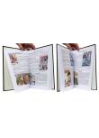 BD de kiosque & Science-Fiction - Pages intérieures - (c) Stripologie.com