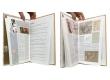 Coïncidence - Pages intérieures - (c) Stripologie.com