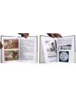 Pellos - Pages intérieures - (c) Stripologie.com