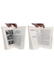 Maus d'Art Spiegelman - Pages intérieures - (c) Stripologie.com
