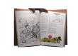 Roba - Pages intérieures - (c) Stripologie.com