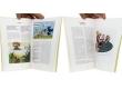 Macherot - Pages intérieures - (c) Stripologie.com