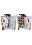 Little Nemo - Pages intérieures - (c) Stripologie.com